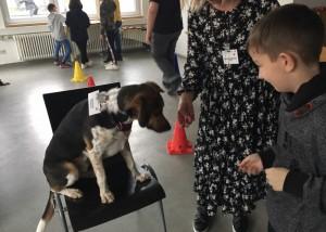 Ereignisreicher Nachmittag an der Hieberschule in Uhingen